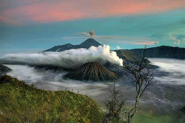 Wisata Gunung Bromo Andalan JawaTimur
