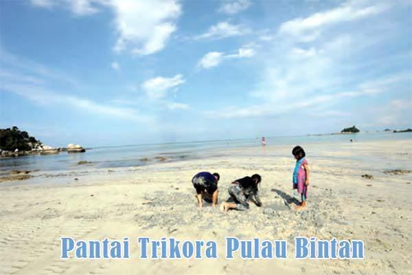 Pantai Trikora Pulau Bintan Kepulauan Riau