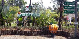 Jendela Alam Bandung Kids Outbound