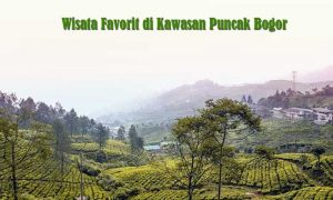 Wisata Favorit di Kawasan Puncak Bogor