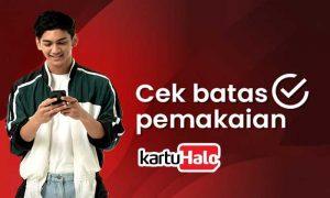 Cek Batas Pemakaian KartuHalo Telkomsel