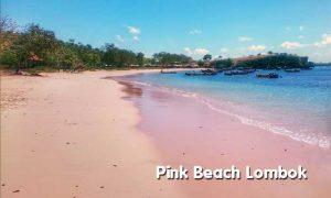 Keunikan Pink Beach di Lombok (Tangsi)